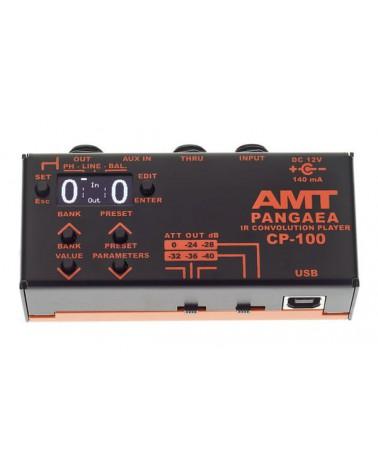 SIMULADOR GABINETES PROGRAMABLE AMT PANGAEA CP100 PEDAL IR CABINET SIMULATOR
